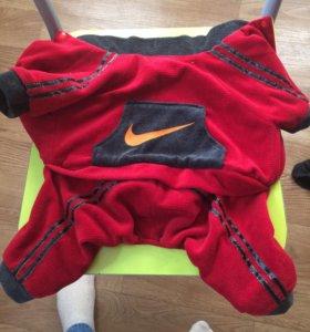 Собачий костюм Nike
