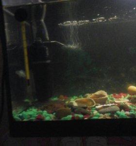 Фильтр для аквариума.