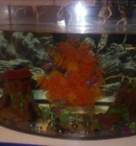Продам аквариум с рыбками, декарациями, воздухом,