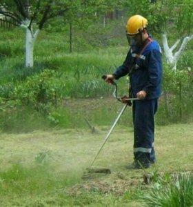 Покос травы и прочие услуги