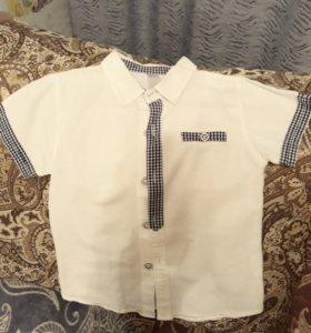 Рубашка 104