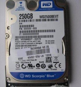 жесткий диск на WD на 250
