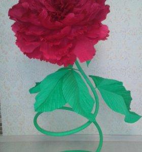 Ростовые цветы( пион)