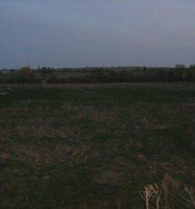 Участок, 1070 сот., фермерское хоз-во