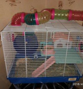 Домик, клетка для грызунов
