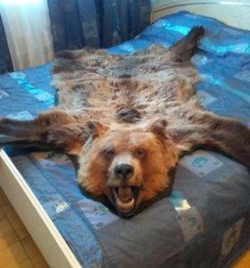 Ковер Медведь