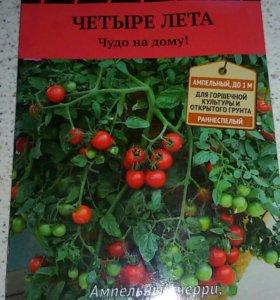 Рассада помидоры ампельный черри