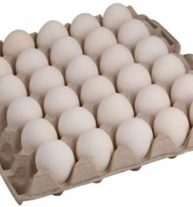 Инкубационное яйцо бройлеров Росс -308 .