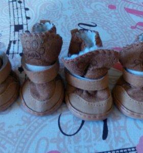 Ботиночки для мини собак