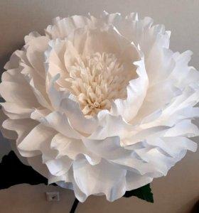 Большие бумажные ростовые цветы пион