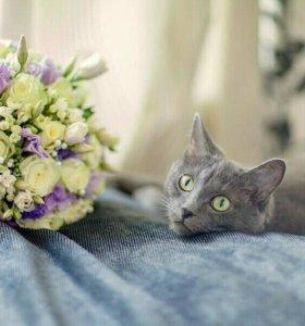 Оформление свадеб. Букет невесты.