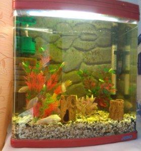 Фирменный аквариум полностью укомплектован 40 л