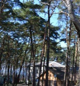 База отдыха на берегу Балтики