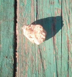 Морской камень 15 шт