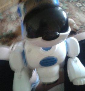 Робот собака на ботарейках