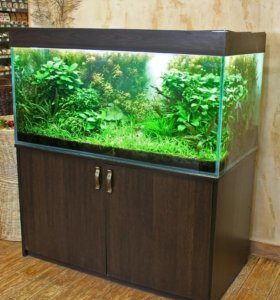Продаю аквариумный комплекс на 550л оформленный