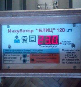 Инкубатор блиц120 срочно