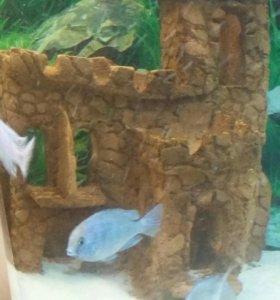 Замок для аквариума грот