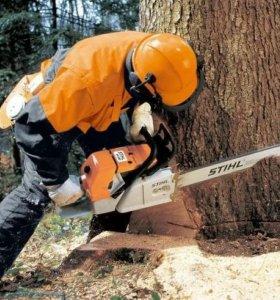 Деревя удаляем