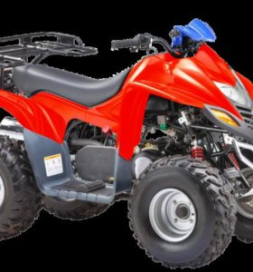 Stels ATV 110D (605)
