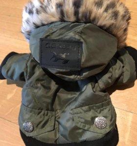 Куртка для маленькой собачки