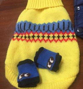 Свитер с носочками для собачки