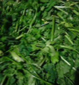 Покос травы,спил деревьев.