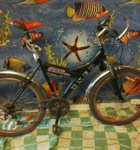 Велосипед гоный