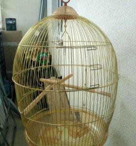 Отличная клетка для попугаев.