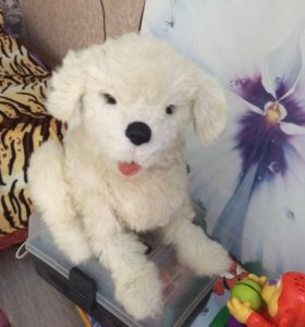 Интерактивная собака Кукки