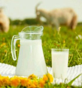 Козье молоко 1литр
