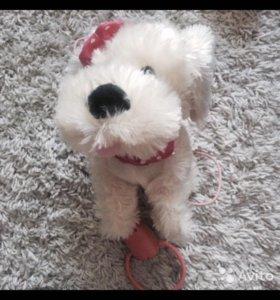 Интерактивная собака