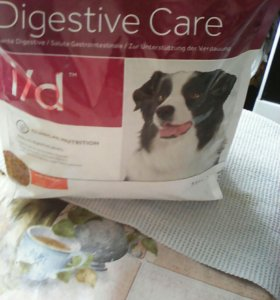 Корм для собак при остром кишечным заболевани
