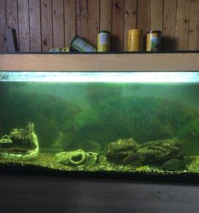 Аквариум 400 литров с рыбами