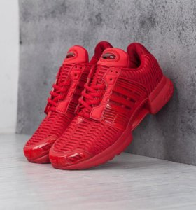 Adidas Climacool (6676)