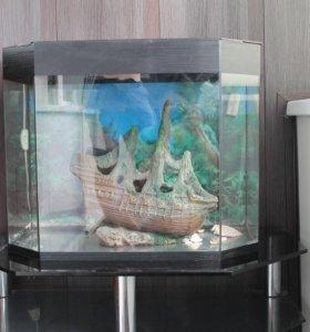 Продам аквариум в хорошем состоянии!