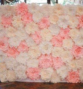 LenTan ростовые цветы на заказ, фотозоны цветы гиг