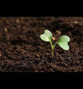 Доставка земли плодородной