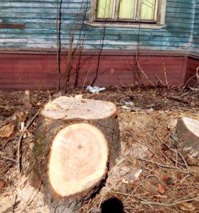 Спил деревьев, выкорчевка пней, уборка участков.