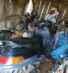 Хонда скутер 250 кубов