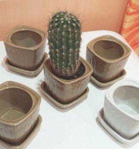 Горшки для цветов из керамики