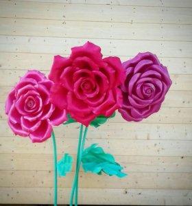 Огромные Розы цветы