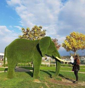 Топиари Слон большой 250*400*190 см 210 кг