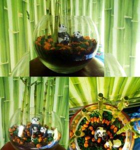 """🌿 """"Бамбуковый лес"""" флорариум для вашего интерьера"""