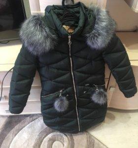 Курка зимняя
