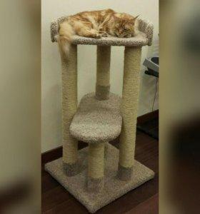 Для крупных кошек