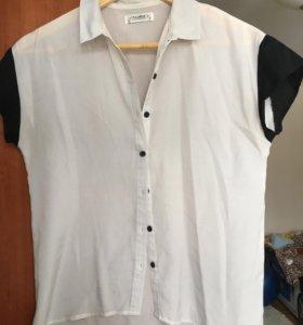 Брендовые рубашки и блузки