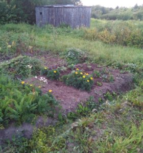 Участок, 13 сот., сельхоз (снт или днп)