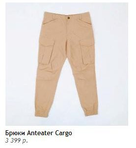 Джоггеры Anteater