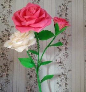 Ростовые цветы, цветы гиганты